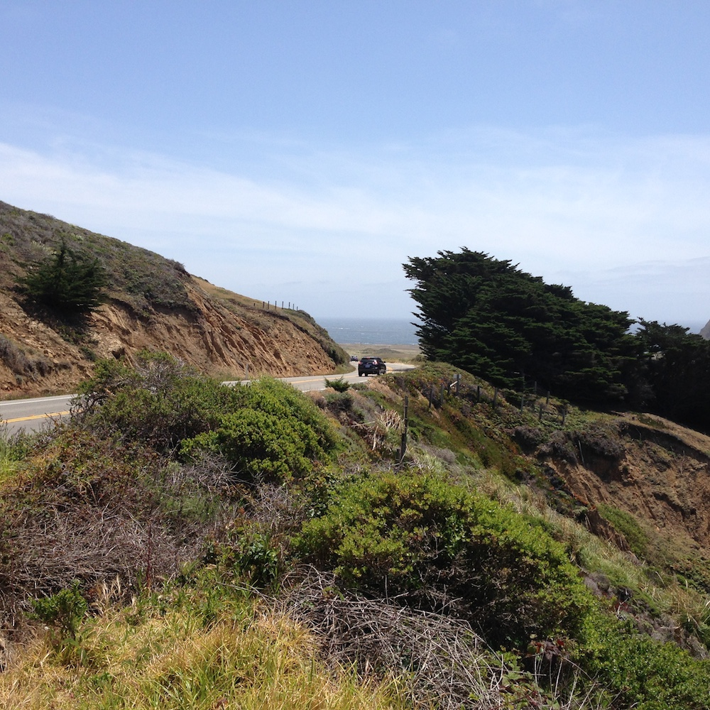 Coastal road near the Sea Otter Refuge.