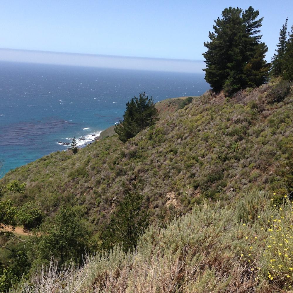 Coast at Big Sur.