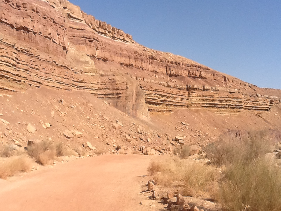 Inside Ramon Crater.