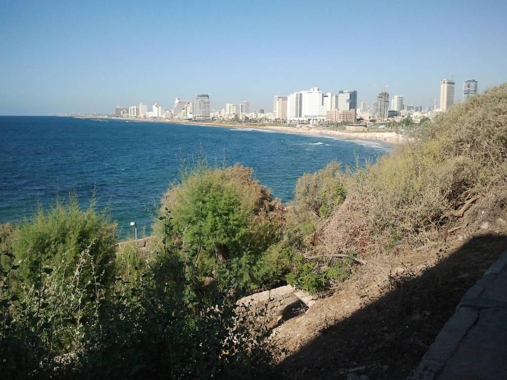 View of Tel Aviv from Jaffa.
