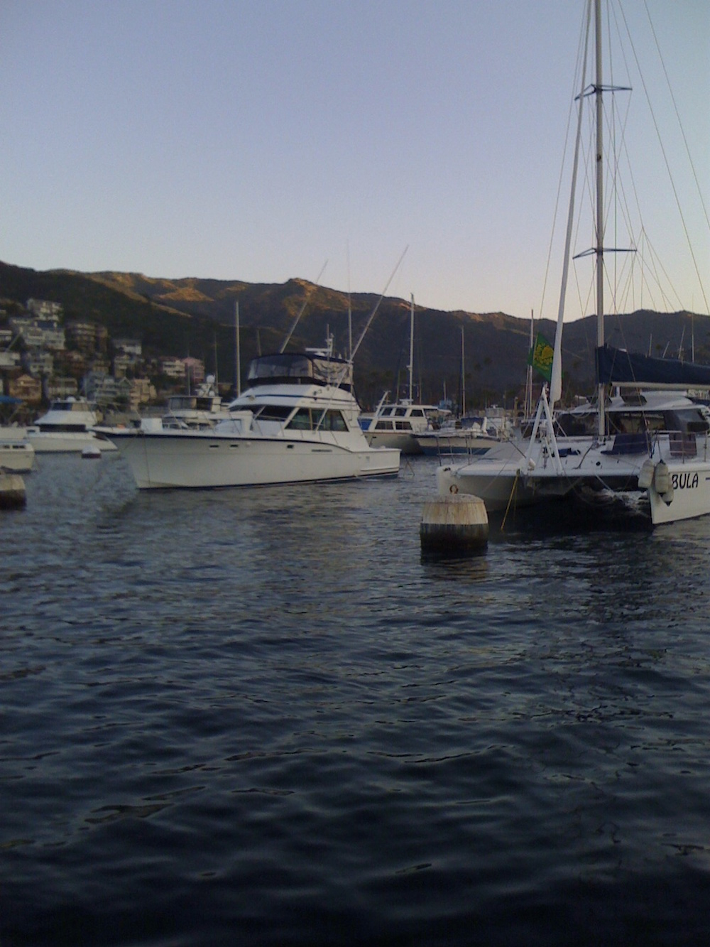 Moorings in the harbour.