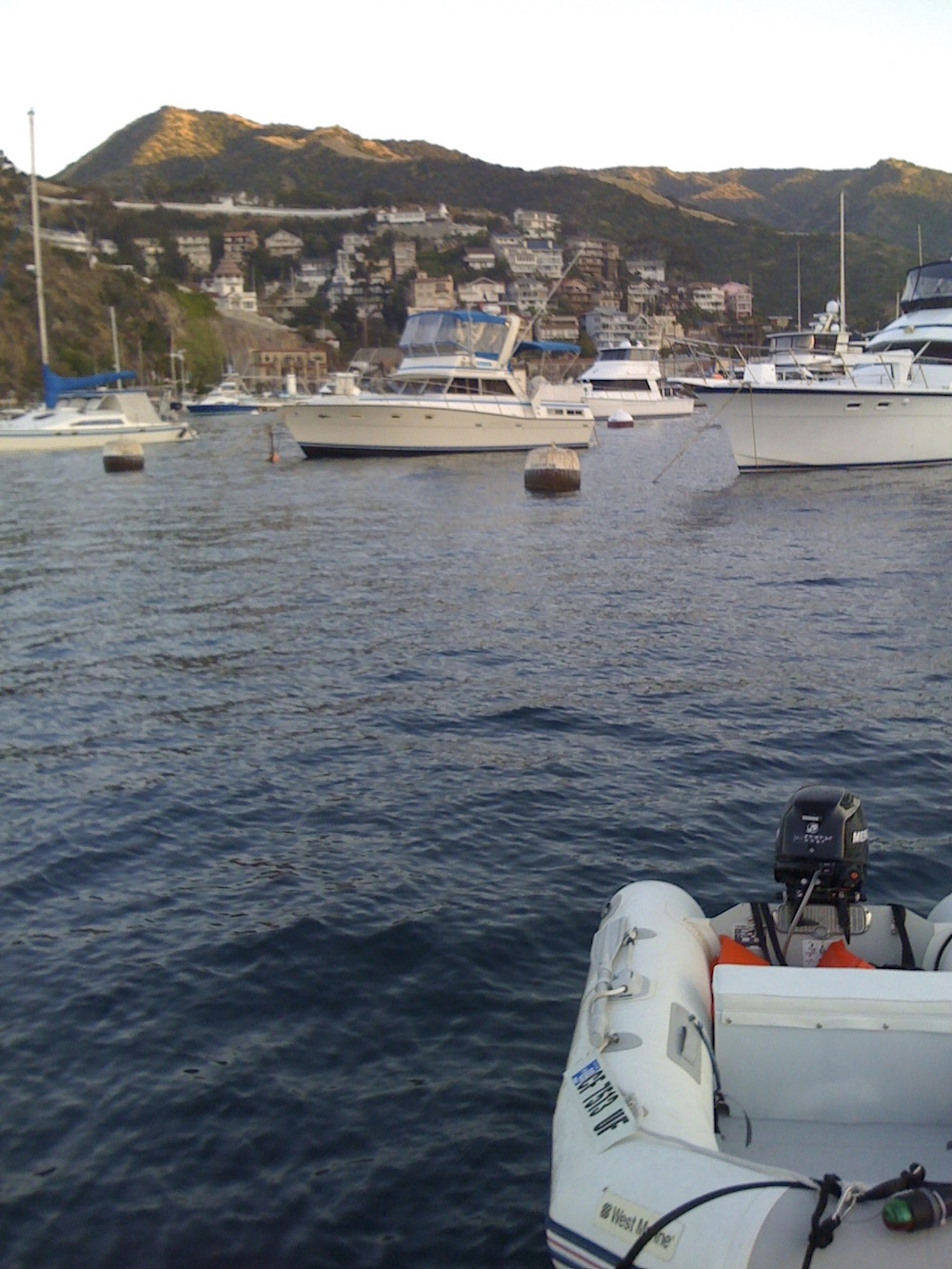 At Catalina harbour.