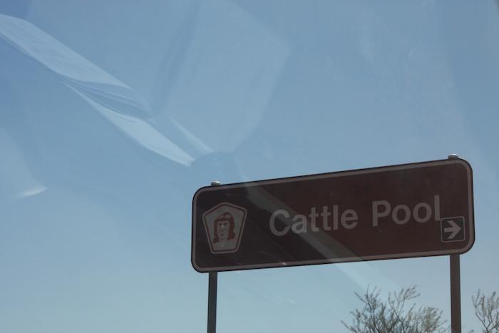 Five kilometres west of Mount Augustus Caravan Park turnoff.
