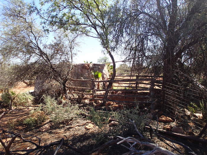 Pinda Well cattle yards.