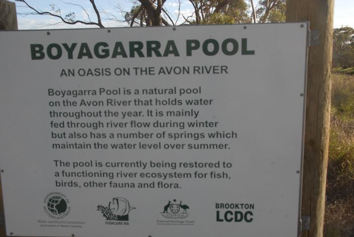 Boyagarra Pool