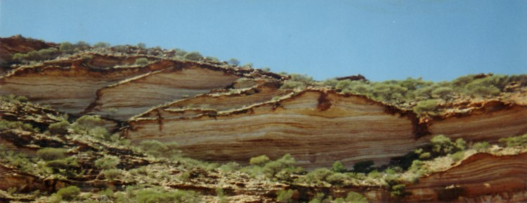 Tumblagooda sandstone cliffs.