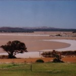 Mouth of the Murchison in flood.