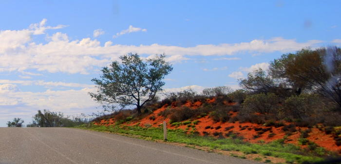 The red soils of the North West.