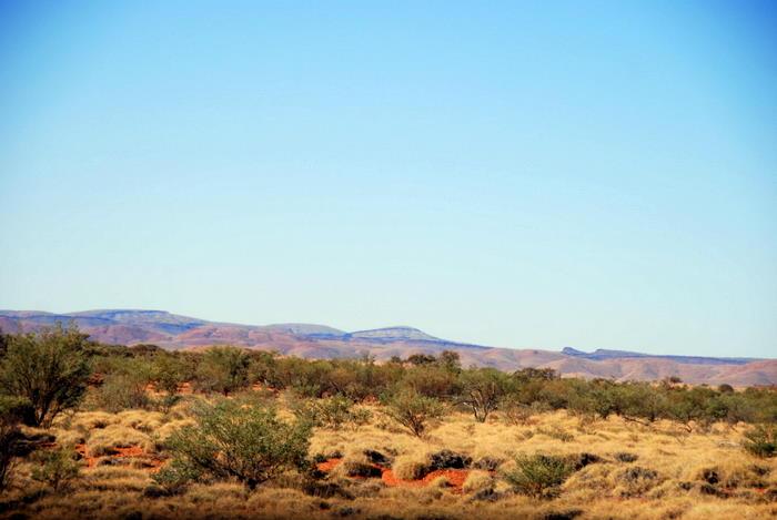 Start of Pilbara country.