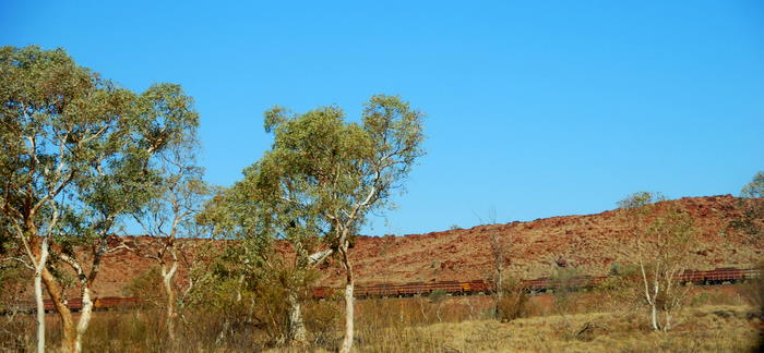 Train taking the iron ore from Tom Price to the port of Dampier.An iron ore train consists of up to 236 wagons, each having a load capacity of up to 106 tonnes. Trains are up to 2.4 kilometres long and, fully loaded, weigh approximately 29,500 tonnes.