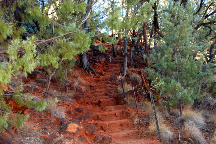 Steps to Dales Gorge