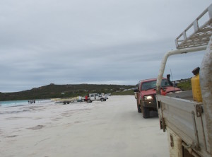 Rodeo and GU Ute at Lucky Bay.