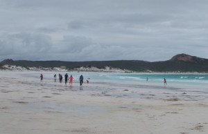 Lucky Bay tourists.