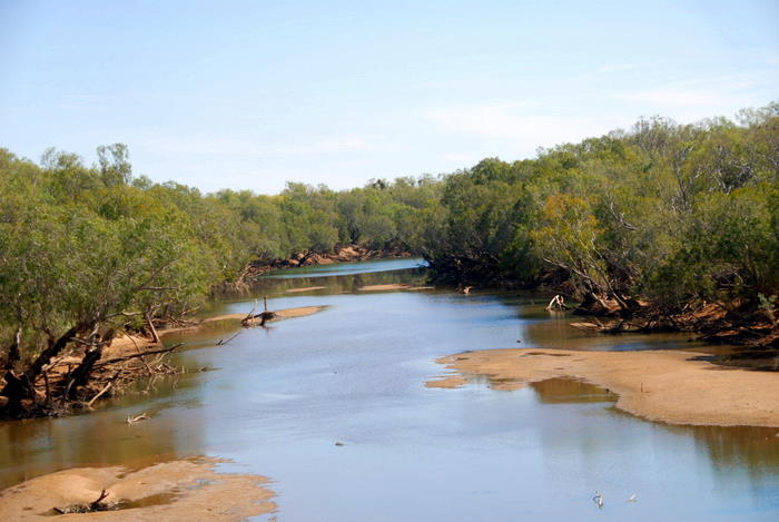 Fitzroy River at Willare, 2010.