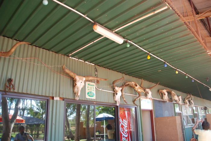 The bric a brac at the Willard Bridge Roadhouse is typical of many outback roadhouses and pubs.