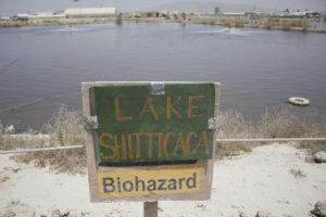 Notorious sewage pond.
