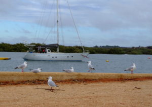Carnarvon Harbour