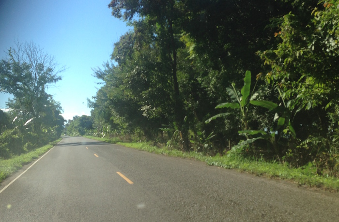 'Banana Tree Road'