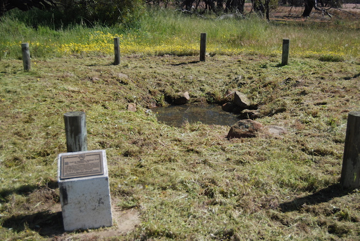 Doodlakine Well and plaque.