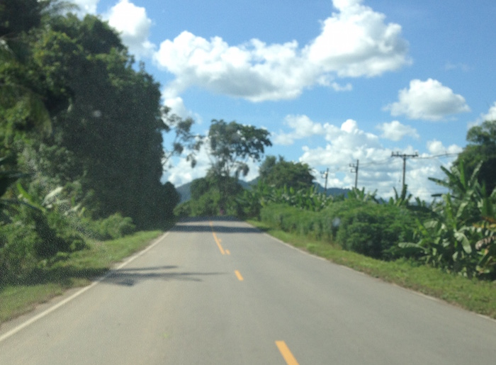 The highway is lined with banana trees, yams and assortment of cropping trees