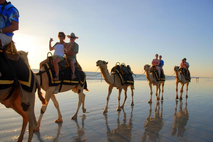 Camel convoy.