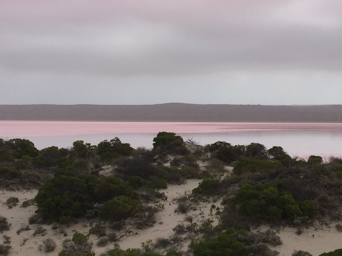 The pink of Hutt Lagoon.