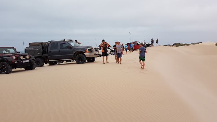 Vehicle line up on top of dune.
