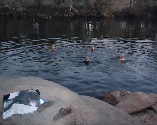 Swimming in Arthur River at Carberdine Pool.