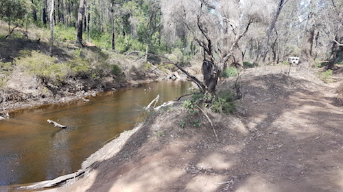 Camping spot on the banks of the Murray River