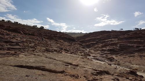 Plesiosaur site.