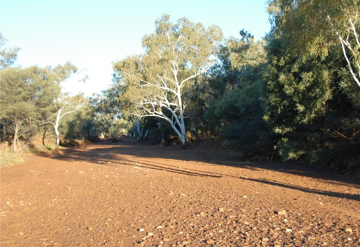 Upper Murchison River