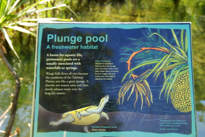 Information about the Wangi plunge pool.