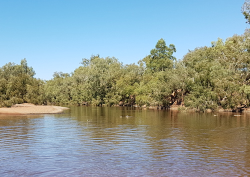 Looking upriver at the Oakover River crossing.