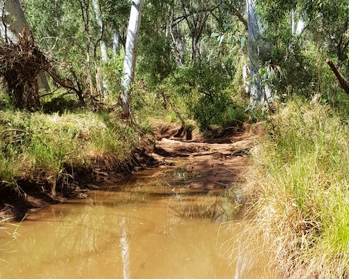 The track into the Running Waters waterhole.