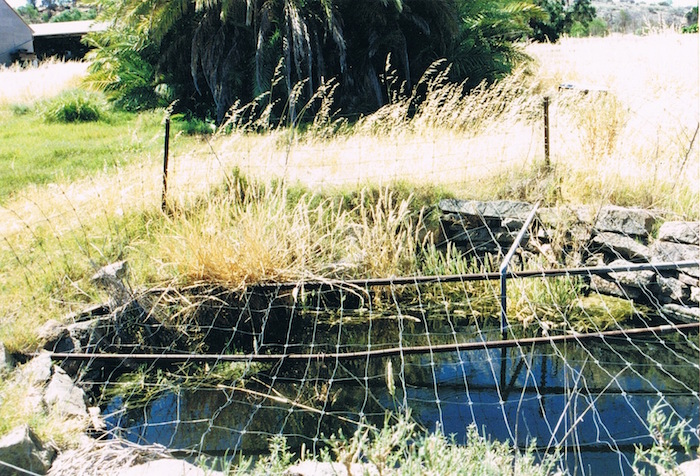 Marranobbing Springs December 1995.