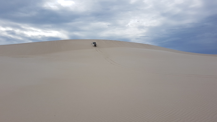 Dan attempts dune.