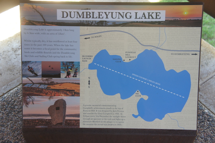 Dumbleyung Lake graphic