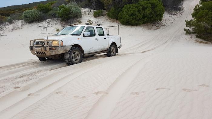 Kerry up onto dunes.