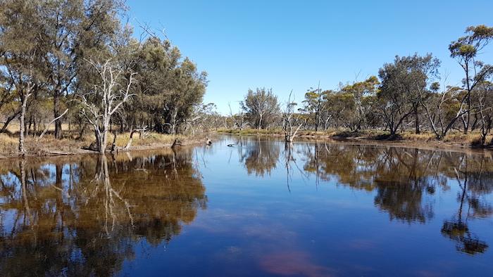 Unseasonal inflows made the lake look very healthy.