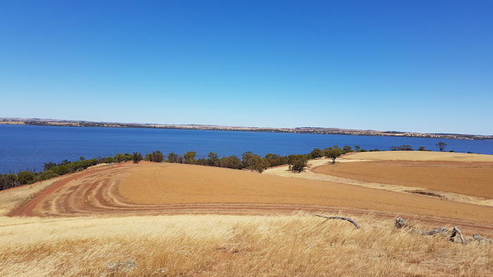 View of Lake Dumbleyung.