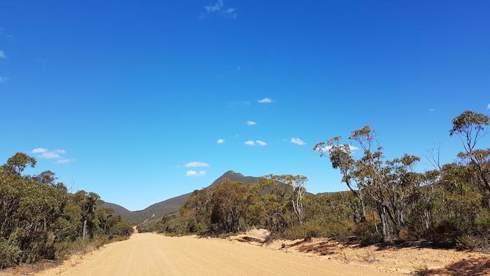 Along Stirling Range Drive.