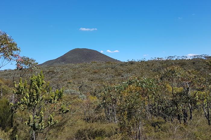 High vegetation obscured many peaks.