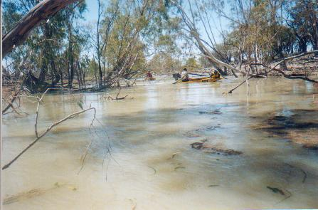 Punkah Creek