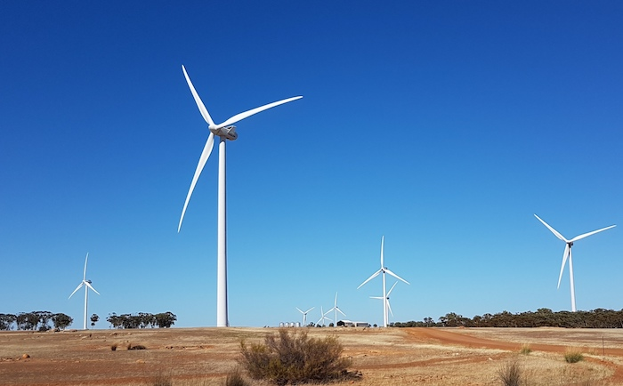 Some of the 111 wind generators at the Collgar Windfarm, Merredin.