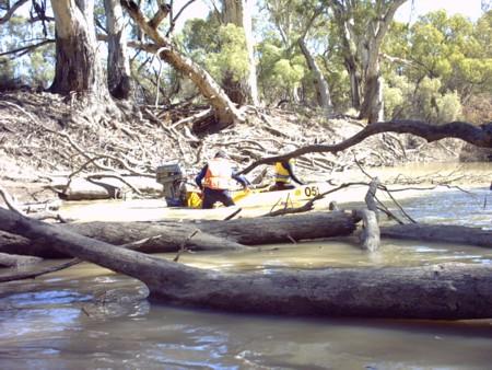 Finding a way through logs at Bunberoo Creek.