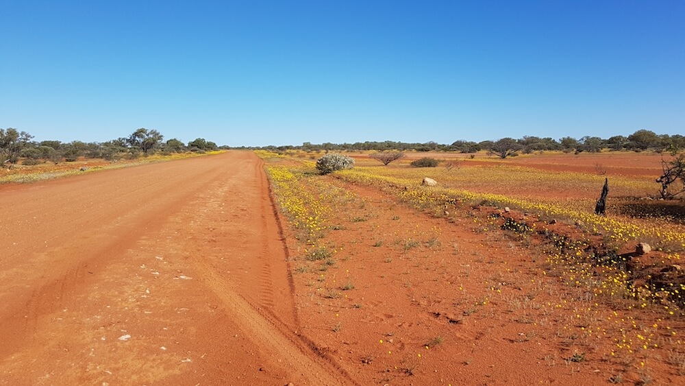 The beginning of the Moogooree Track is a good outback road.