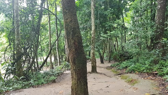 The return path from the waterfall.