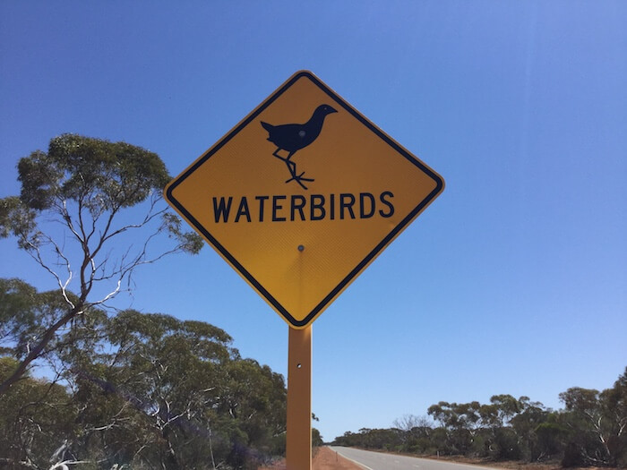 Waterbirds sign on North West Coastal Highway.