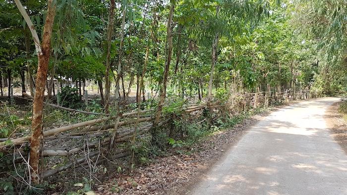 Near Kamcha-I
