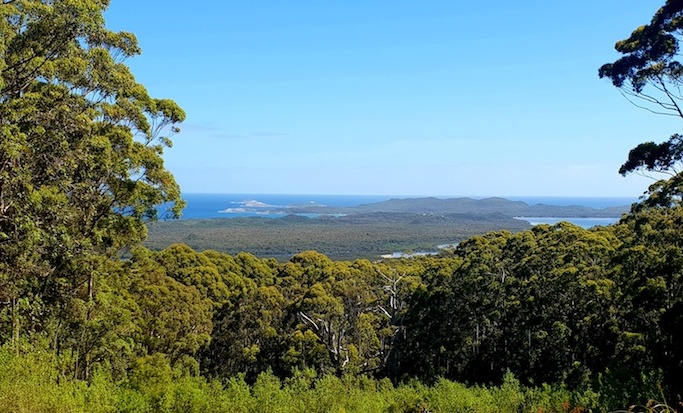 Hilltop Lookout, just out of Walpole.